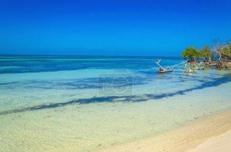 Foto de Las vistas de la playa en las islas del Caribe - Imagen libre de derechos