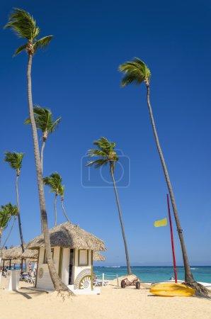 Exotic coast of the Caribbean islands