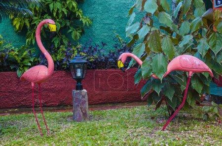 Decorative pink flamingos
