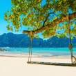 Swing hang from coconut tree over beach, Phi Phi I...
