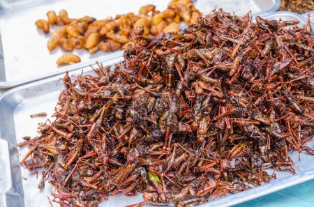 Fired locusts and worms on food market