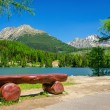 Bench in the background of a mountain lake and mou...