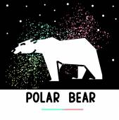 polar bear and aurora borealis