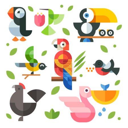 Illustrations magic birds and chicks