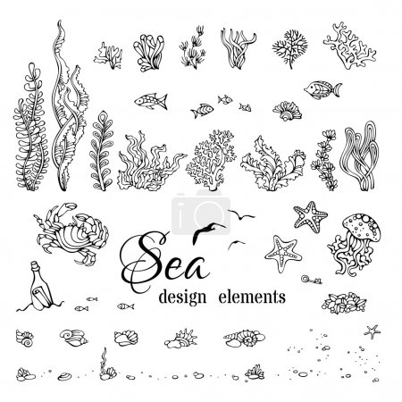 Illustration for Various black contours of shells, algae, fish, jellyfish, starfish, bottle with a letter, key, stones and bubbles isolated on white background. - Royalty Free Image
