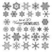 Vector Set of 30 Vintage Snowflakes