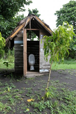 view of Jungle Restroom