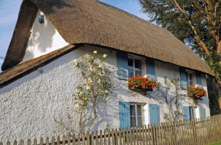 Photo for A traditional old English thatched roof Cottage - Royalty Free Image