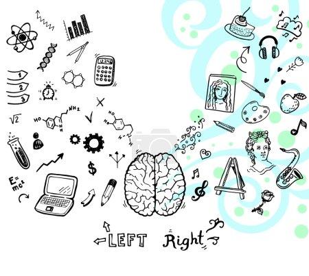 Illustration pour Illustration dessinée à la main des fonctions cérébrales gauche et droite . - image libre de droit