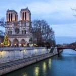 Notre Dame de Paris at dusk, France....