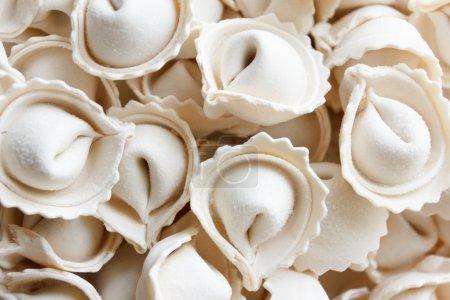 dumplings or ravioli frozen bowl