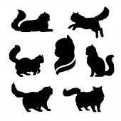 Persian cat icons and silhouettes