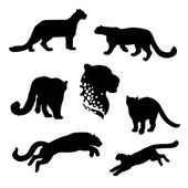 Snow leopard set of silhouettes vector Collection of animal icons