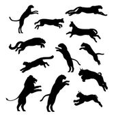 Jumping cats and pathers set of black silhouettes Icons and illustrations of animals Wild animals pattern