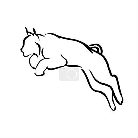 Illustration pour Logo lynx vecteur. Saut graphique chat sauvage - image libre de droit