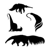 Ant-eater icons and silhouettes Set of illustrations in different poses