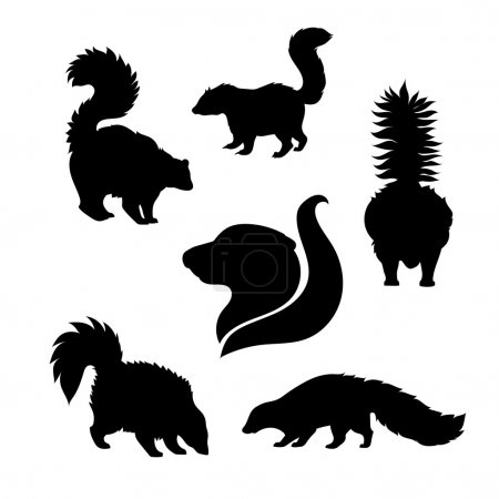 Vector silhouettes of skunk.