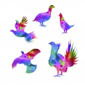 Grouse bird vector watercolor icons and patterns Set of illustrations in different poses