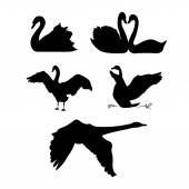 Swan vector silhouettes
