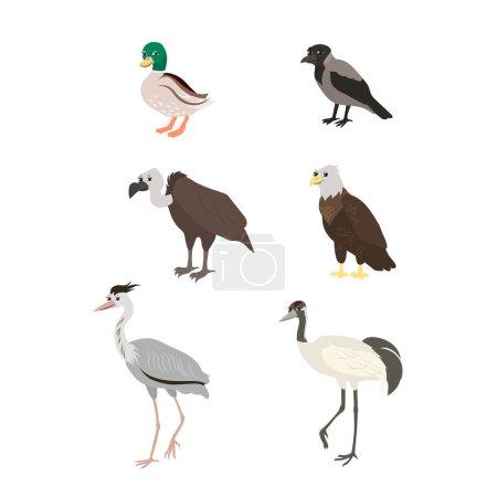 Cartoon set: duck crow buzzard eagle crane heron.