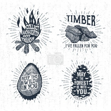 Hand drawn vintage badges set with textured bonfire, timber, tree trunk, and pine cone vector illustration.