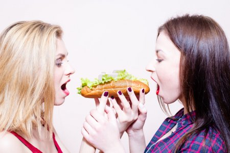 Picture of 2 hungry beautiful girls having fun eating together one hotdog on light background copy space