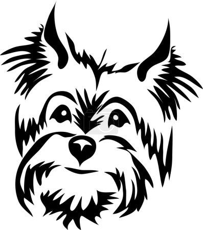 head of terrier dog