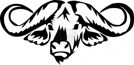 head of african water buffalo