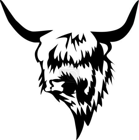head of highland bull