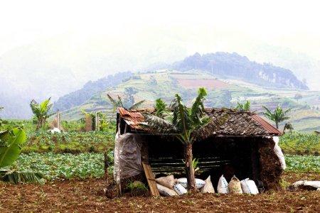 Bâtiment traditionnel sur la colline de la ferme