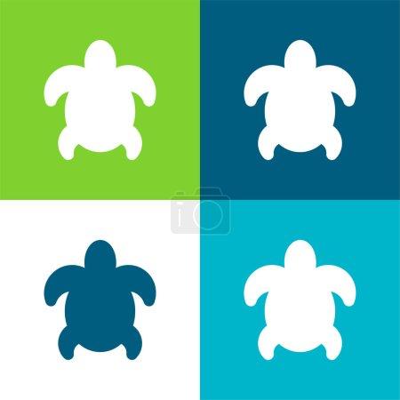 Big Turtle Flat four color minimal icon set