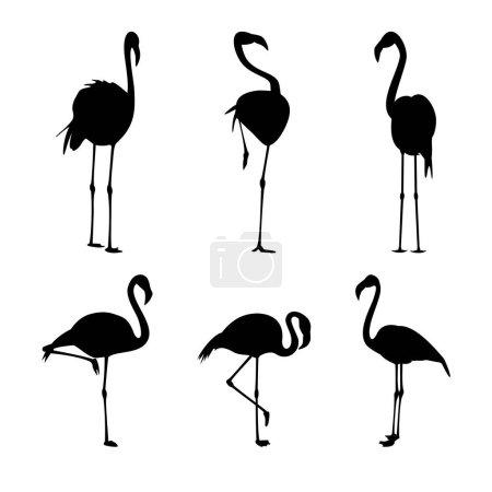 Illustration pour Flamingo black silhouettes set isolated on white vector illustration - image libre de droit
