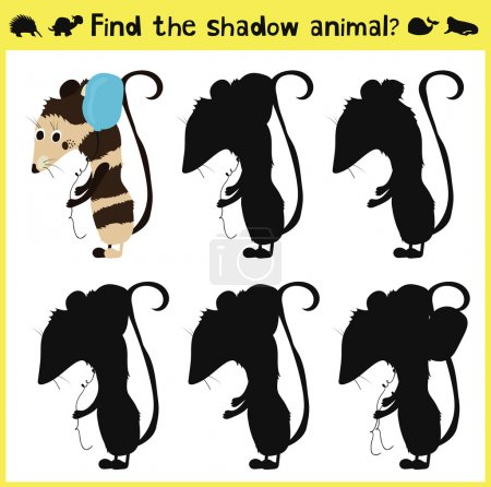 Children's developing game to find an appropriate shadow animal of the opossum. Vector
