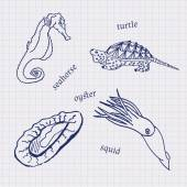 Drawings in their notebooks in a cage of marine animals and seafood scallop sea horse squid oysters Vector
