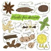 A large set of isolated colorful spices and herbs from the desserts and pastries for design on white background illustration