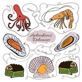 Hand drawn vector collection of seafood aphrodisiacs