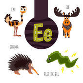 Fun animal letters of the alphabet for the development and learning of preschool children Set of cute forest domestic and marine animals with the letter e Vector illustration