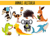 Set of Cute cartoon Animals and birds of Australia and its ostrovov Kangaroo possum numbat the Koala bear EMU parrot alligator echidna and a predatory shark  Vector illustration