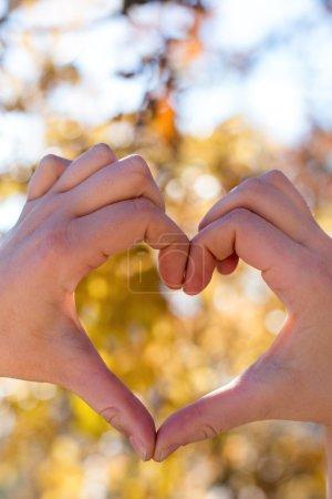 Photo pour Mains coeur sur fond de nature. forme de coeur le jour de la Saint Valentin - image libre de droit