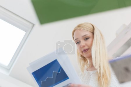 Woman working on business project