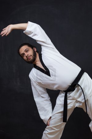 Male Karate Fighter training