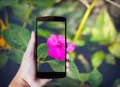 Moderní mobilní telefon v ruce