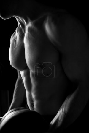 Photo for Man lifting dumbbell. Muscular body. Cropped photo. - Royalty Free Image