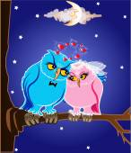 Lovers owl sitting on a tree branch under the moon