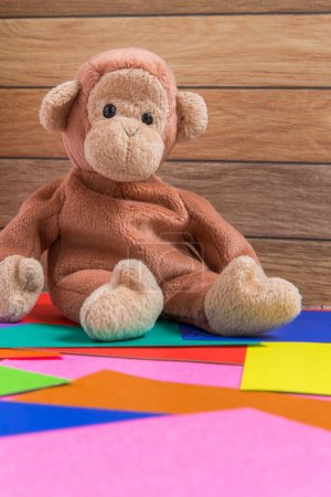 Monkey Doll on Colorful Background