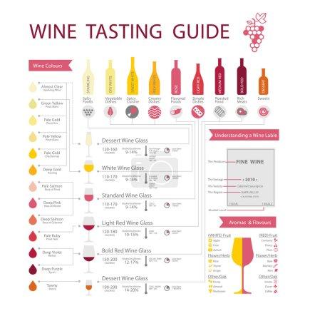 Illustration pour Infographie du vin avec appariement des aliments, type de bouteille et de verre, types de vins et couleurs . - image libre de droit