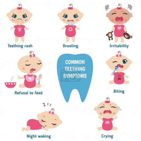 Baby teething symptoms