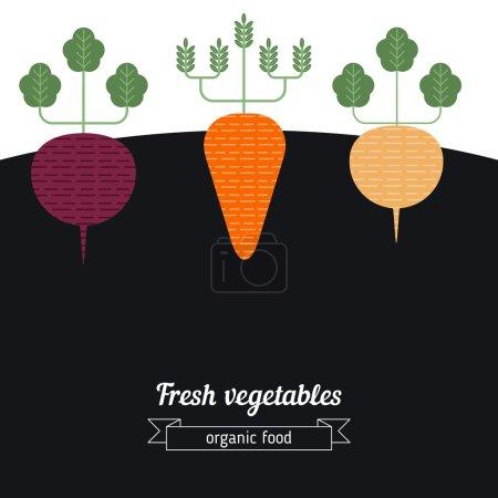 Illustration pour Betteraves, carottes, navets illustration de légumes. Légumes fond de jardin . - image libre de droit