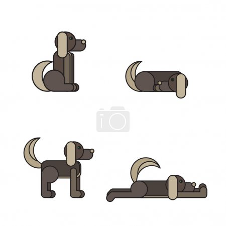 Dog in 4 positions