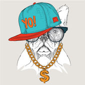 The poster with the image dog portrait in hip-hop hat Vector illustration
